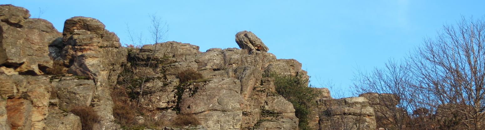 Le rocher d'escalade